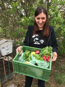 Bioigel Gemüsekiste Zustellung
