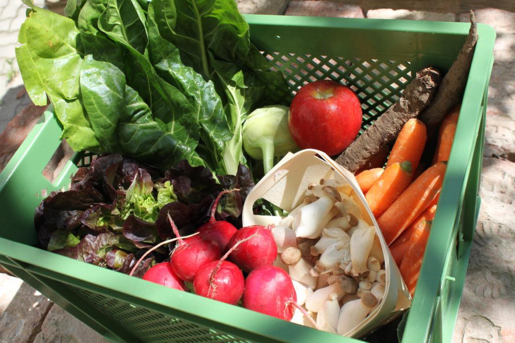 Gemüsekiste Wien